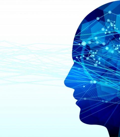 楽観脳と悲観脳 2021.1.23